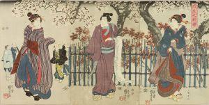 国芳/弥生之夜桜のサムネール