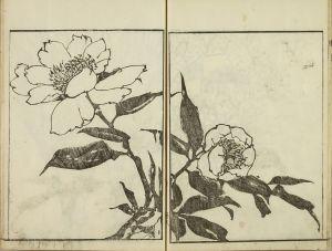 河村文鳳/文鳳画譜 河村文鳳画 文化4年(1807) 元表紙 元題箋 極少汚のサムネール