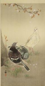 小原古邨/三羽の鳩に桜のサムネール