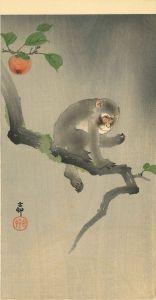 小原古邨/猿に柿のサムネール