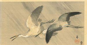 小原古邨/雨中の青鷺のサムネール