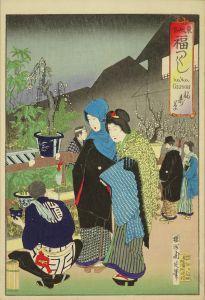 周延/東風俗福つくし 福寿草のサムネール