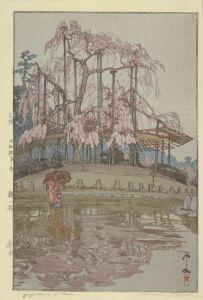 吉田博/桜八題 春雨 自摺のサムネール
