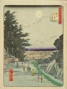 広重二代/江戸名所四十八景 六 駿河台月夜のサムネール