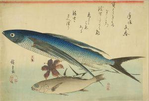 広重/魚づくし 飛魚 いしもちのサムネール