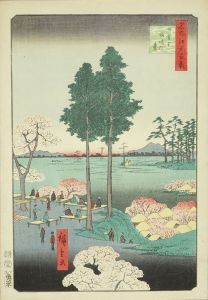 広重/名所江戸百景  日暮里諏訪の台のサムネール