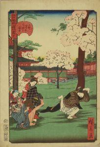 広景/江戸名所道外尽 二十一 上野中堂二つ堂の花見のサムネール