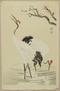琴塚英一/白梅に鶴のサムネール